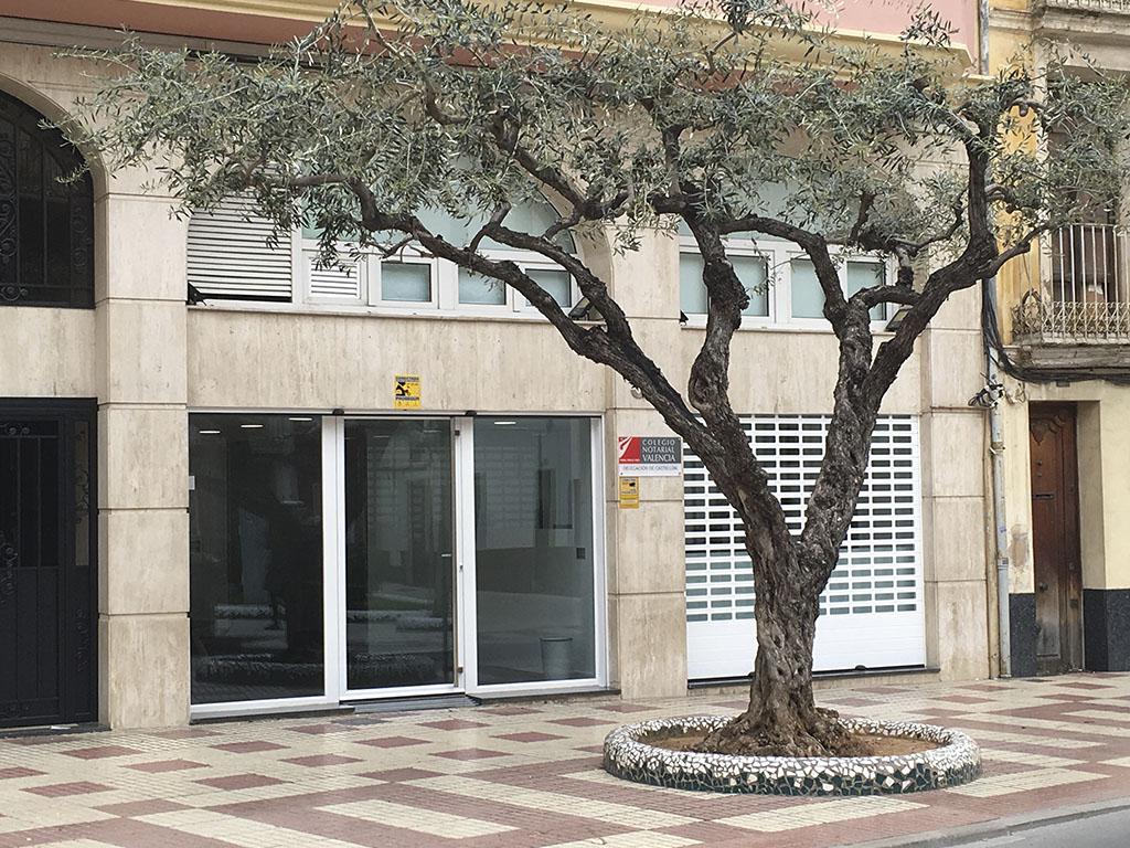 Reforma de fachadas para empresas en Castellón